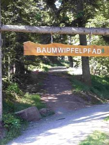 Baumwipfelpfad Bad Wildbad Eingang