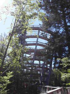Turm Baumwipfelpfad