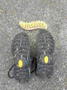 Schuhpflege grobe Bürste