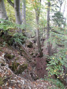 Herbstwanderung Zollerngraben