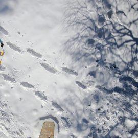 Die Schneeschuhwanderung – Winterwandern genießen!