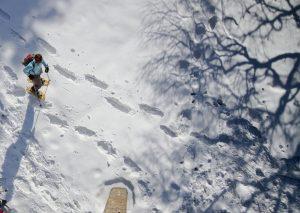 Schneeschuhwanderung Titelbild