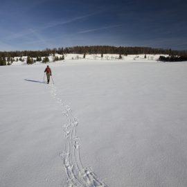 Winterwandern – Touren und Ausrüstung