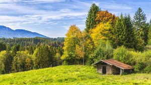 Wanderverein Hütte